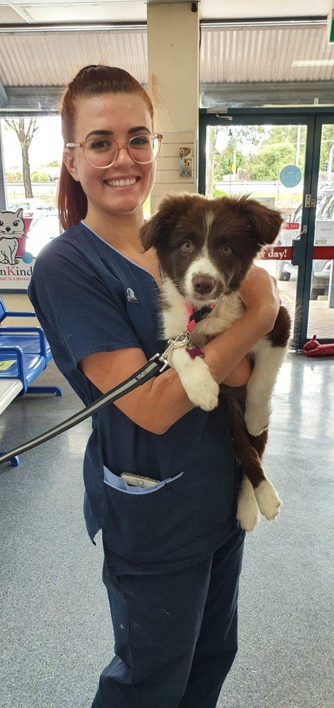 Emily Veterinary Nurse